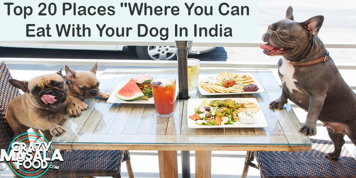Top 20 Places Where You Can Eat With Your Dog In India